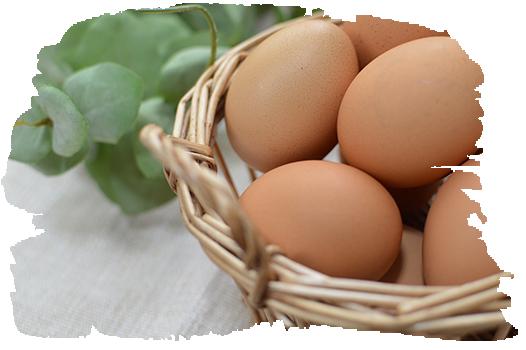 卵の神様が創り上げた こだわりの卵